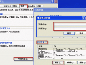 CAD无法启动,提示缺少Aclst16.dll文件