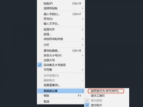 CAD多行文字编辑器中的WYSIWYG是什么意思